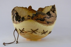 19.1 Hollow Form Box Elder 7x5 SOLD