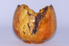 30.1 Hollow Form Box Elder 6''x7''