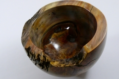 34.1 Hollow Form Box Elder 7''x4.5''